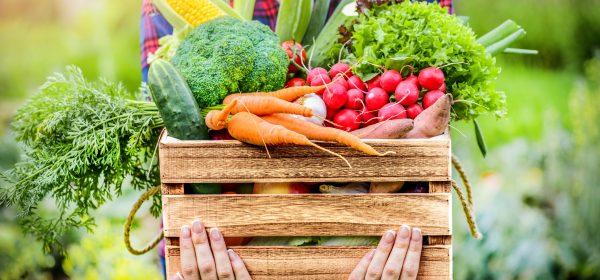 Čerstvé bedýnky s ovocem a zeleninou